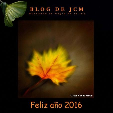 FelizAño2016a450 (redimensionado)